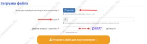 выбор файла, указание почты и капчи